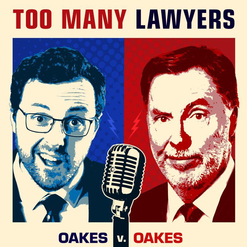 Too Many Lawyers